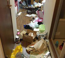 ゴミ屋敷の最近の事例⑨
